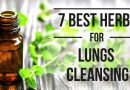 7 Best Herbs for Lungs Cleansing