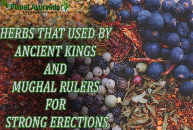 Ayurvedic Treatment for Strong Erection