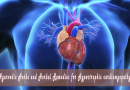 Ayurvedic Herbs and Herbal Remedies for Hypertrophic cardiomyopathy (HCM)